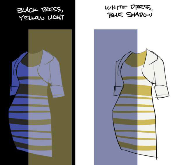 Black and Blue Dress Explanation