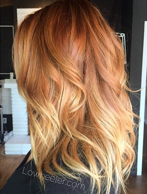 Copper Red Clairol Color For Hair  Dark Brown Hairs