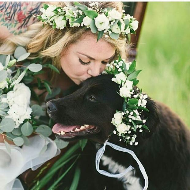 Matching Bride and Pet Floral Headband for Spring Wedding