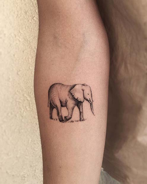 Cute Elephant Arm Tattoo for Elephant Tattoo Ideas