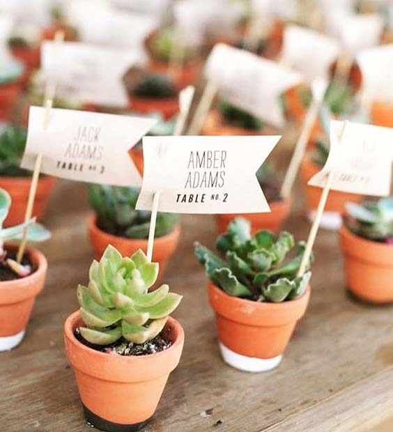 Cute Plant Place Cards