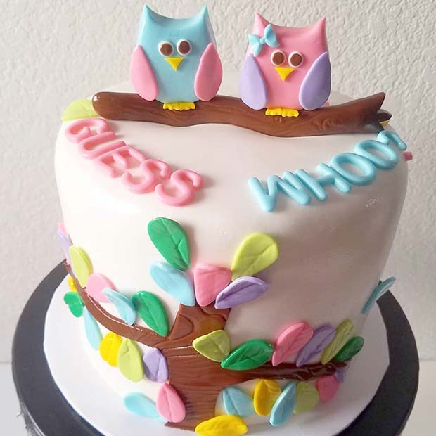Adorable Owl Gender Reveal Cake