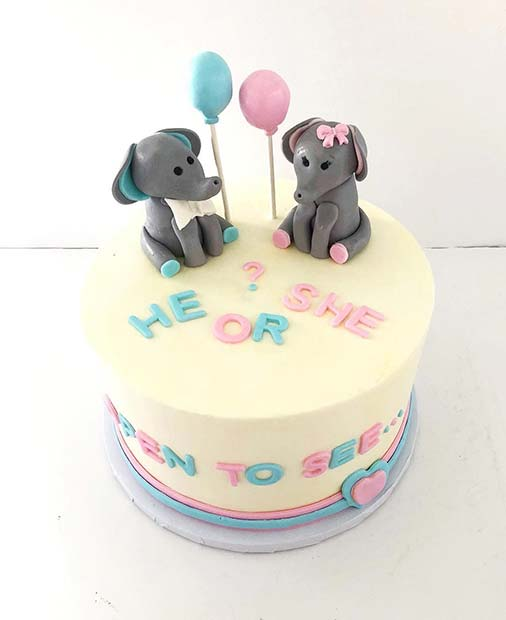 Cute Open to See Gender Reveal Cake