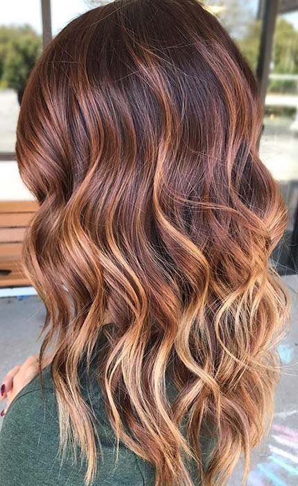 Warm Brown to Honey Blonde Hair
