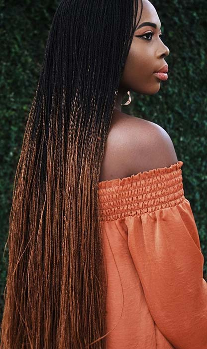 Ombre, Micro Twist Braids