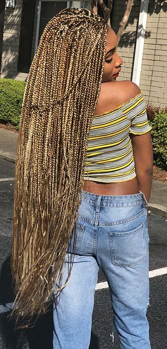 Multi Tone Blonde Box Braids