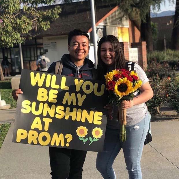 Cute Prom Proposal Poster Idea