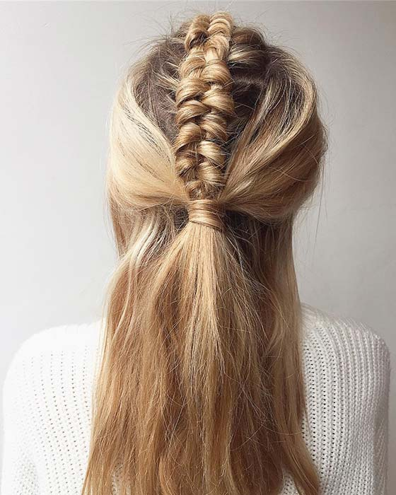 Chunky Braid with Half Up Hairstyle