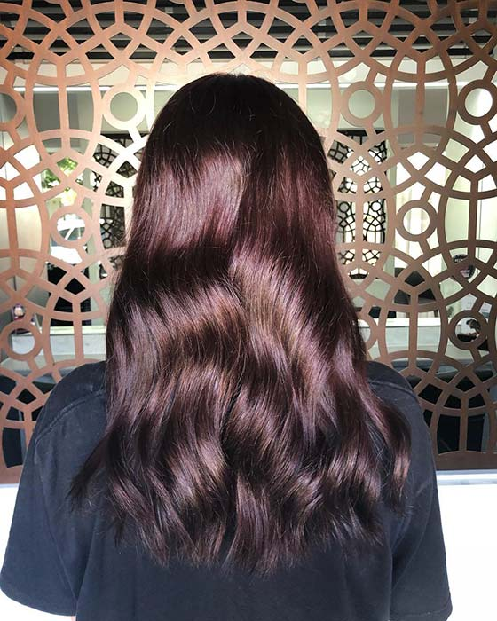 Subtle Burgundy Hair Idea