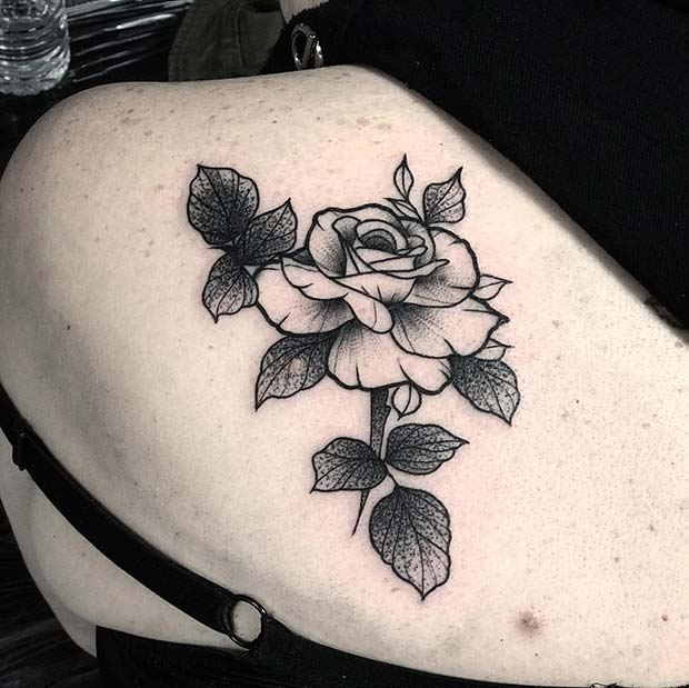 Pretty Rose with Shaded Leaves