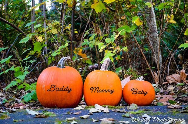 Daddy, Mommy and Baby Pumpkins
