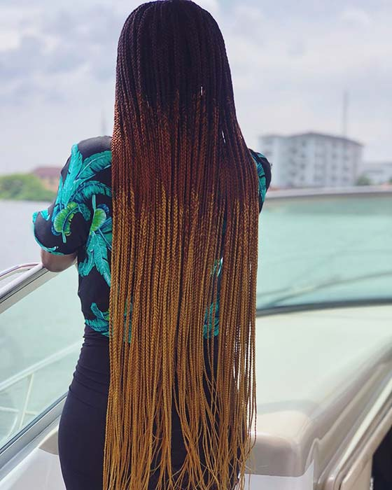 Bold Three Shade Ombre Braids