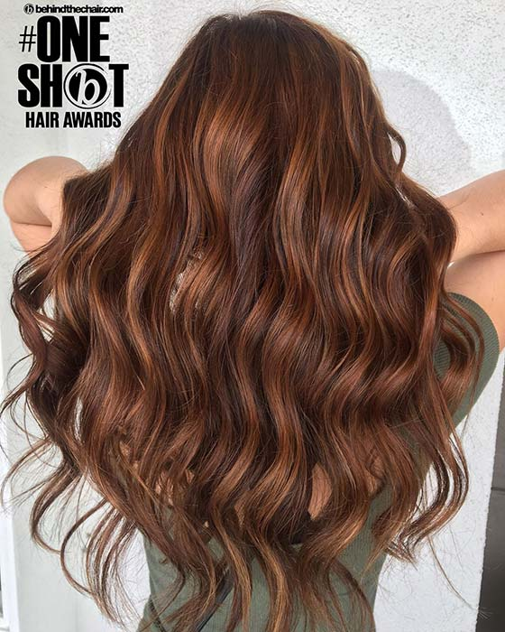 Warm Chestnut Hair Color Idea