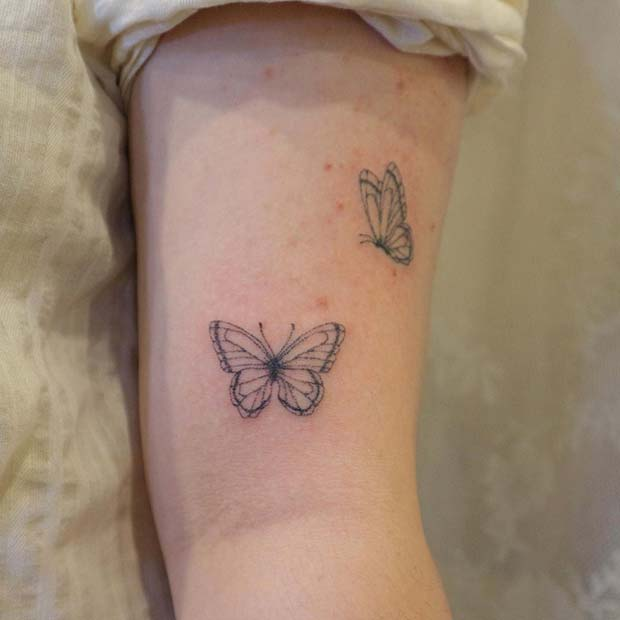 Two Small Butterflies